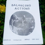 balancing actions - Pioneers Press