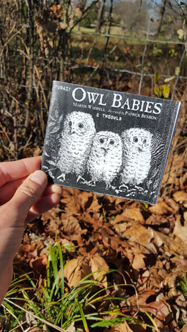 Fugazi Owl Babies - Pioneers Press