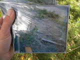 Run Hide Retreat Surrender (full-length CD) - Pioneers Press