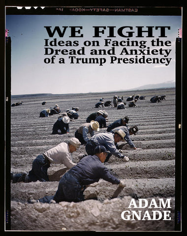 We Fight: Ideas on Facing the Dread and Anxiety of a Trump Presidency E-Book
