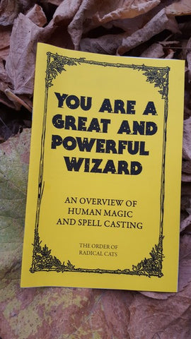 You Are a Great and Powerful Wizard - Pioneers Press