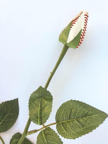 Baseball Rose Closeup