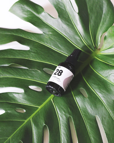 28 TRAILBLAZER ENERGIZING FACIAL SPRAY | FOCUS YOUR MIND