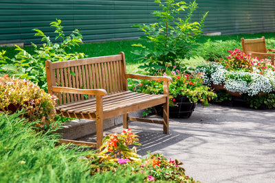 4 Ways to Make Your Backyard Beautiful