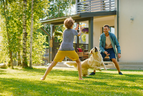 Photo of father and son playing frisbee with a dog in the yard.