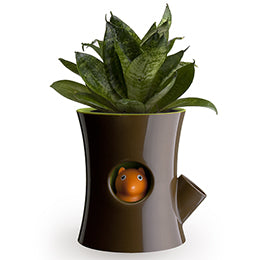 Log & Squirrel Planter Pot - Great Gift Under $20
