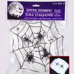 Spider Webbing with Spiders