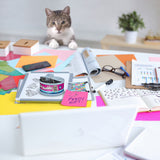 Kitty Kaddy - Cat Paper Clips & Storage