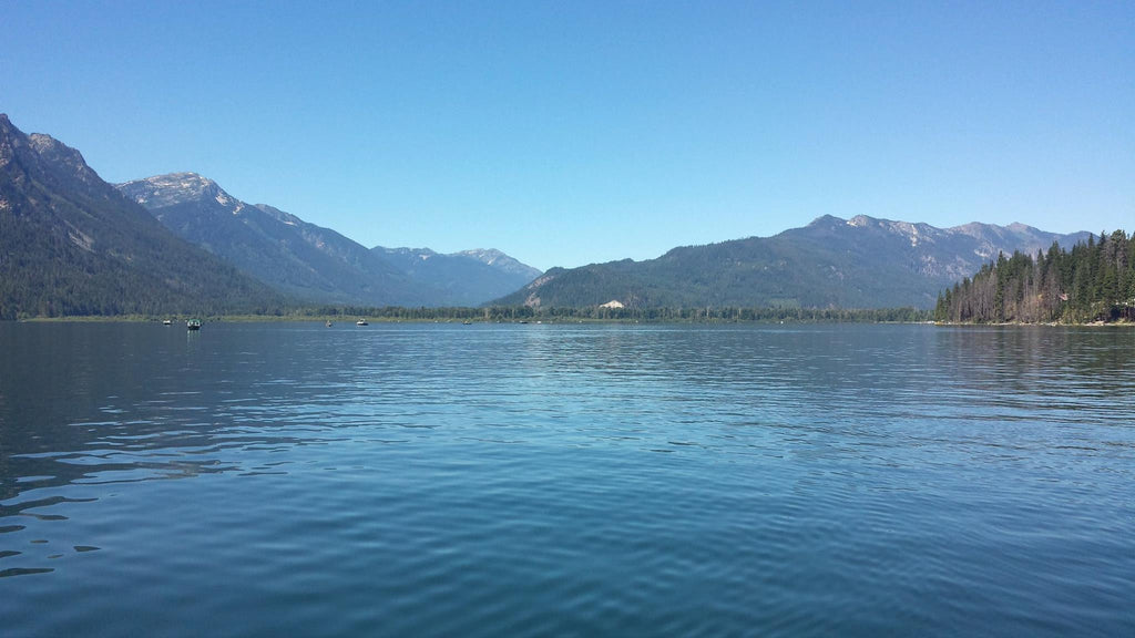 Weekly Holy Moly Report July 31st: Lake Wenatchee Sockeye