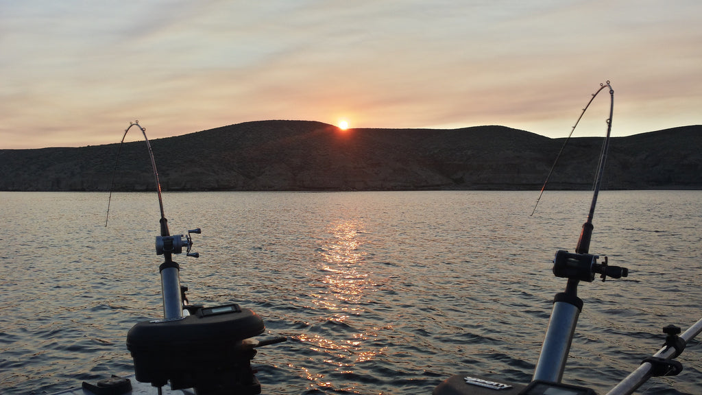 Weekly Holy Moly Report 4th of July 2016: Flaming Gorge Kokanee