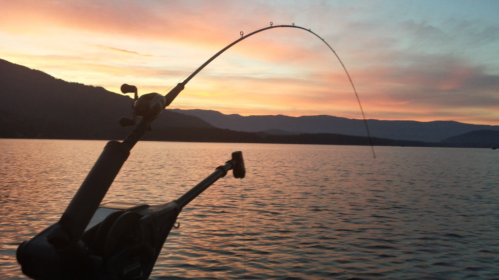 Lake Wenatchee Sockeye August 13th 2016