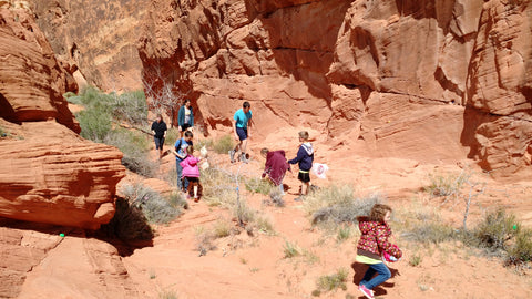 Holiday writing prompts. Easter Egg Hunt to fill each other's baskets. Robison and Watkins families, March 2016, Valley of Fire