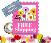 Free Shipping on Orders Over $25.00