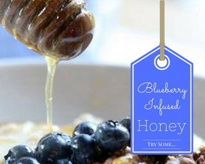 Honey - 1 Lb Blueberry Infused Honey