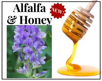 Honey - Alfalfa Honey