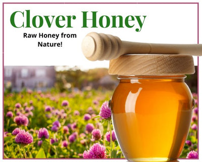 Honey - Raw Clover Unfiltered  Honey