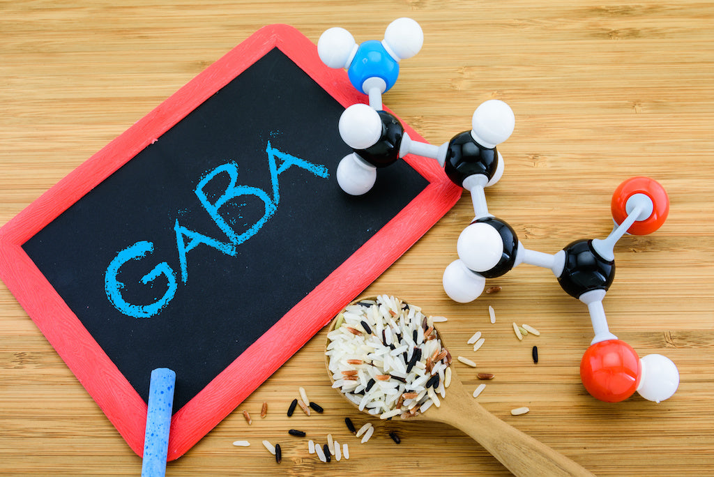 gaba supplement benefits