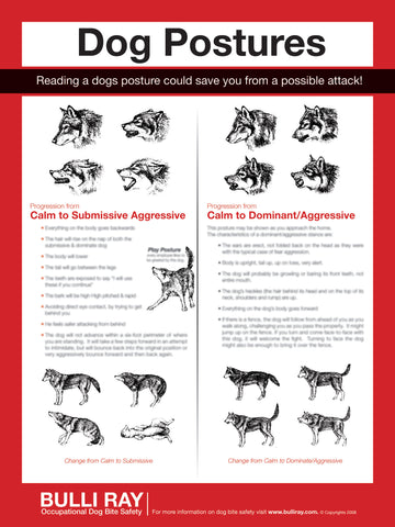 "#728 Dog Bite Safety ""Posture Poster"""