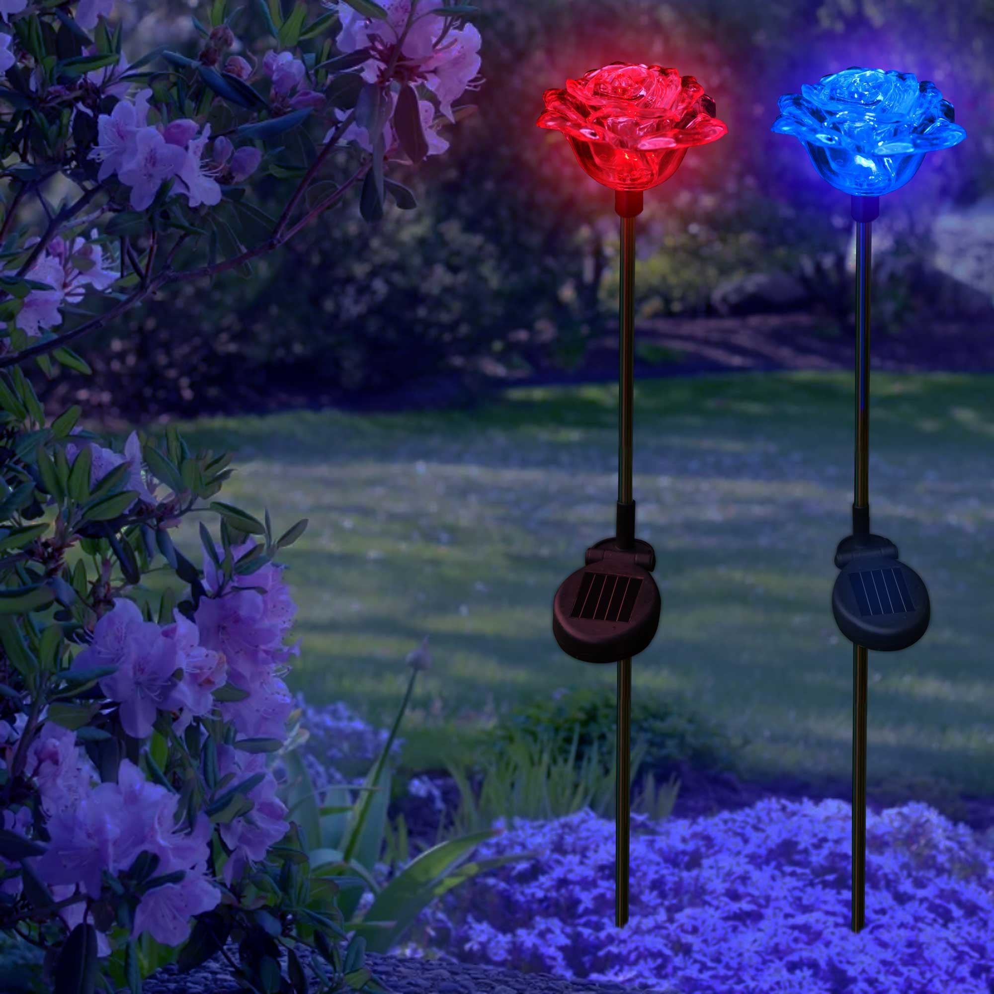 Solar Garden Lights Color Changing Lovely Roses SolarDuke