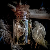 Snake Skin, Moss + Palo Santo Necklace for Transformation, Rebirth, Healing and Dream Recall