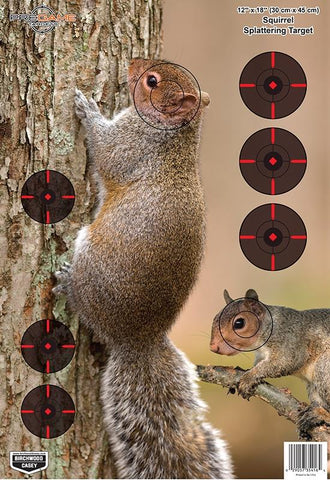 BIRCHWOOD CASEY PREGAME Squirrel 12INx18IN - 8 Sheets - SKU: BW35406, Amazon, birchwood-casey, ebay, paper-targets, Shooting-Gear, Targets-Target-Holders, under-50