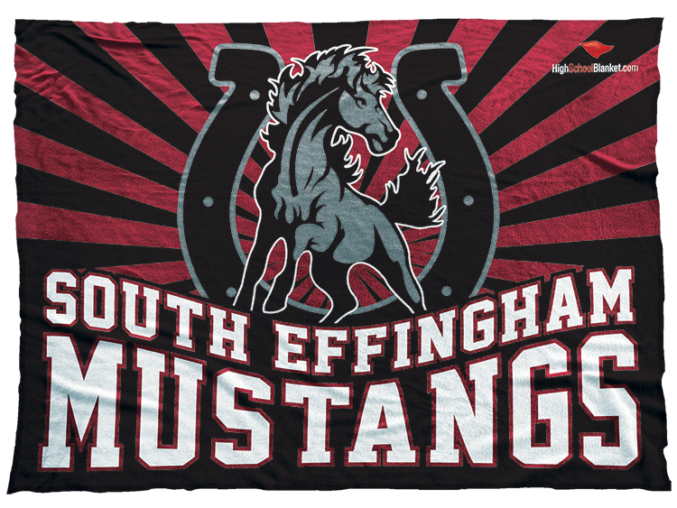 South Effingham Mustangs