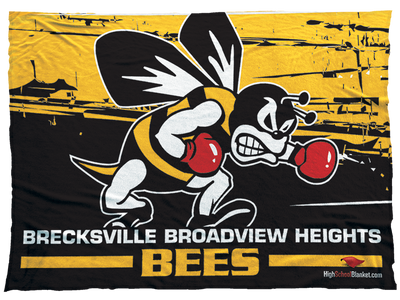 Brecksville Broadview Heights Bees