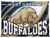 West Greene Buffaloes