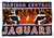 "Madison Central Jaguars 48""x70"""