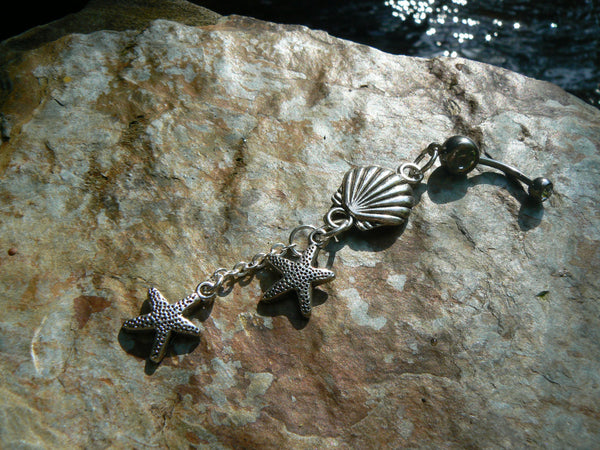 double starfish shell belly ring starfish clam shell