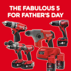 The Fabulous Five for Father's Day