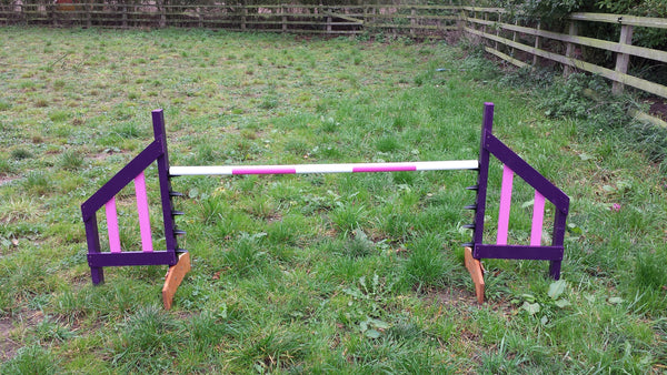 Competition Type Jump with fixed jump cups - Longfield Agility Solutions