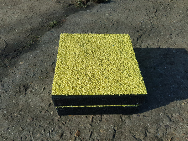 "10"" x 10"" Clicker Training/Shaping Platforms - Longfield Agility Solutions"