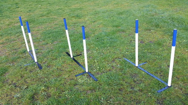 2 x 2 Weaves - Longfield Agility Solutions