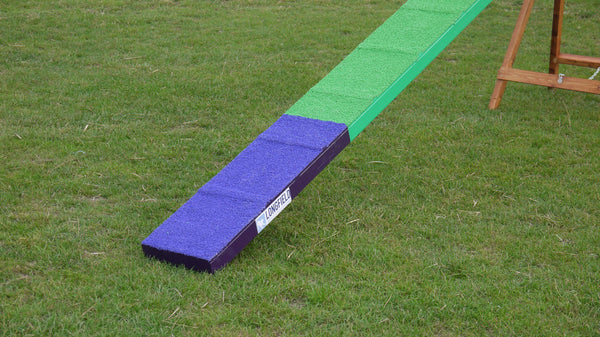 Competition Dogwalk with slats - Longfield Agility Solutions