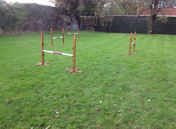 Garden/Training Jump - Longfield Agility Solutions