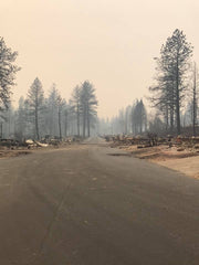 Road in Paradise, fire damage from the Camp Fire