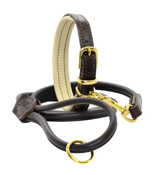 Dogs & Horses Padded Leather dog Collar with Matching Rolled Lead