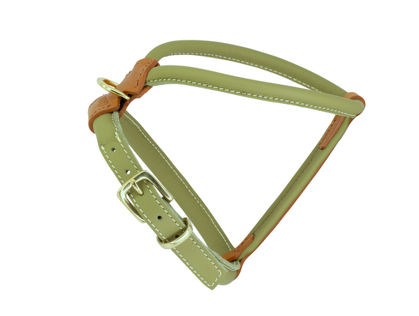 Whippet Leather Dog Harness