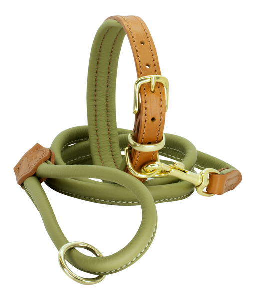 Autumn Winter Padded Leather Collar with Matching Rolled Lead Set