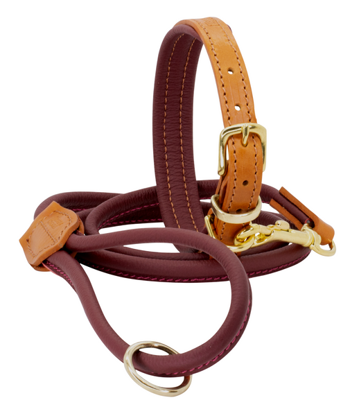 D&H Padded Leather Collar with Matching Rolled Lead