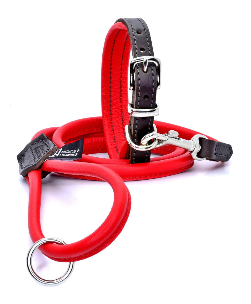 D&H Padded Leather Collar and Rolled Leather Lead Red with Silver