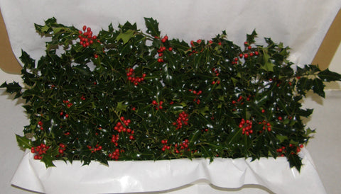 3G - GREETINGS - Boxed Holly
