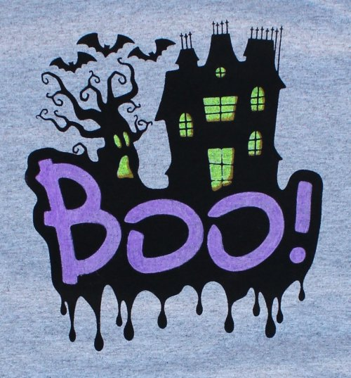 DIY Custom Screen Printed Halloween Shirt Kit
