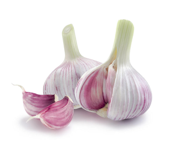 The Complete Garlic for Hemorrhoids Review (2018) - Can I Use Garlic on Hemorrhoids?