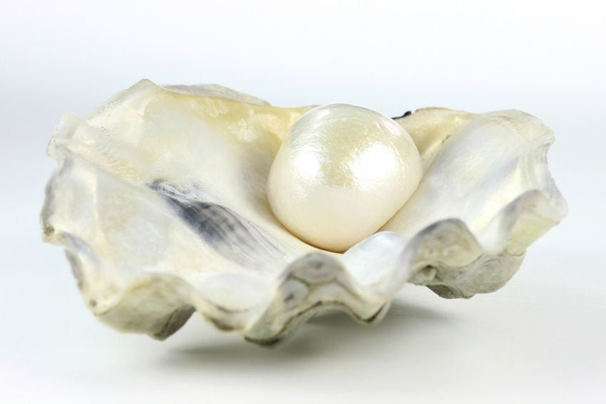 shashi beautiful a carats ray or pearl the of radiography are real what natural from certified new x pearls lot