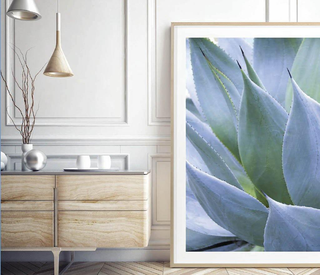 Juniper House-Grand Image Home-Thea Schreck-Agave 1