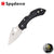Spyderco Dragonfly 2 Folder - Black - Blade City