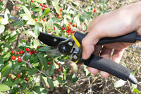 Bypass Pruning Shears - BastexShop