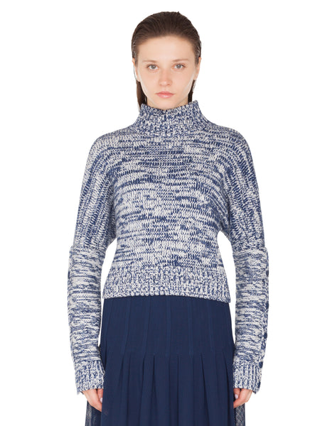 Akris Punto Sweater - Blue/White